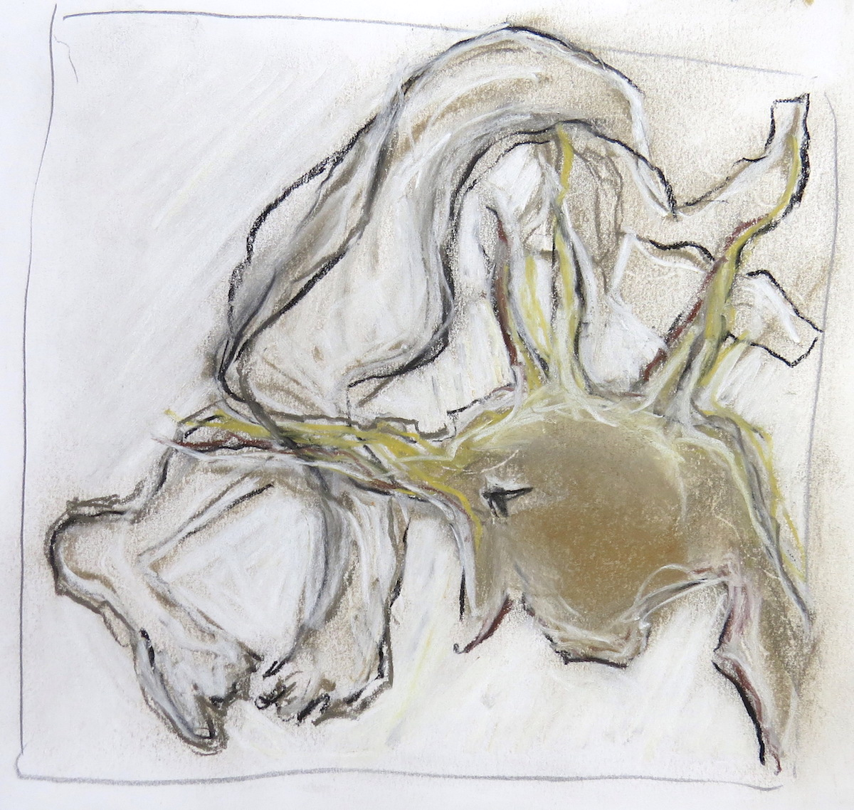 studio sketch on paper, Canadian contemporary artist barbra edwards, gulf islands